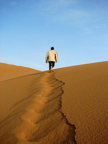 desert-leader